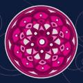Pink Mandala