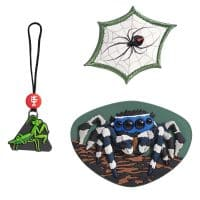 Step by Step MAGIC MAGS Jumping Spider